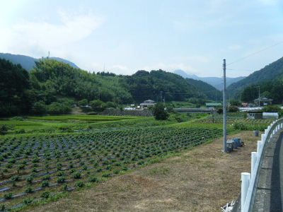 2010_0815高尾・山北0019