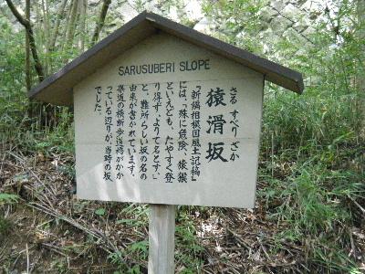 2010_0828箱根run0096