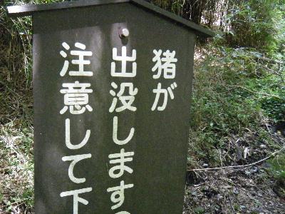 2010_0828箱根run0091