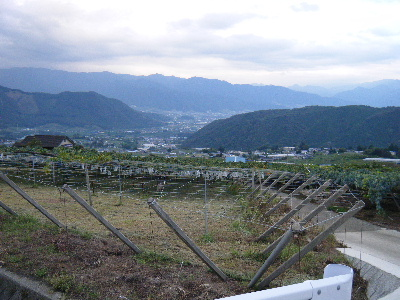2010_0919巨峰の丘マラソン0063