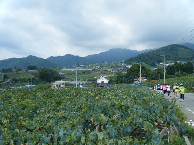 2010_0919巨峰の丘マラソン0090