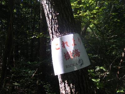 2010_1002富士山麓トレイル0095