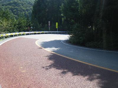 2010_1002富士山麓トレイル0134