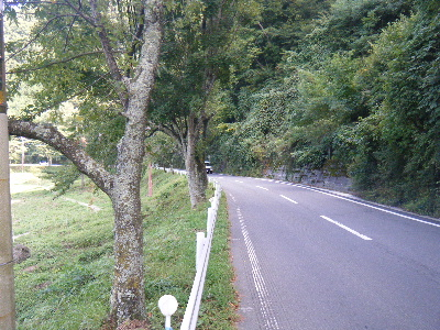 2010_1002富士山麓トレイル0145