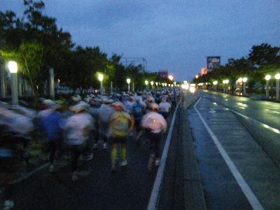 2010_1010えちごくびき野0111