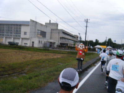 2010_1010えちごくびき野0115