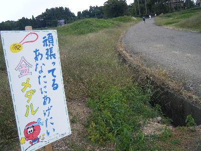 2010_1010えちごくびき野0144