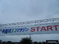 2010_1103手賀沼0004