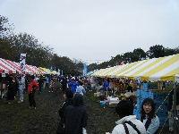 2010_1103手賀沼0006