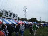 2010_1103手賀沼0005