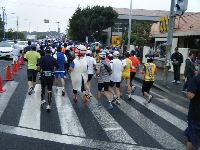 2010_1103手賀沼0026
