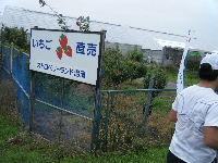 2010_1103手賀沼0034