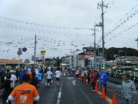 2010_1103手賀沼0065