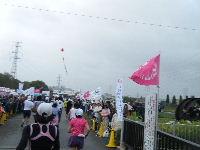 2010_1103手賀沼0078