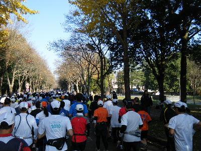 2010_1128つくばマラソン0021