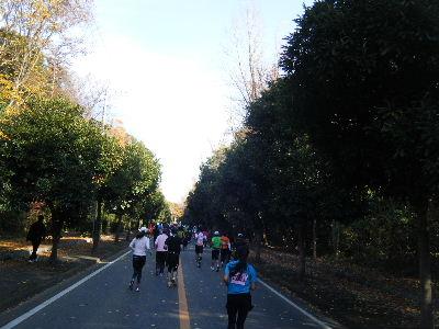 2010_1128つくばマラソン0089