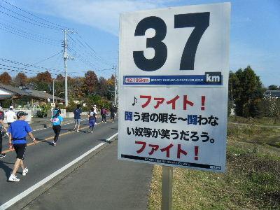 2010_1128つくばマラソン0088