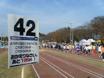 2010_1128つくばマラソン0105