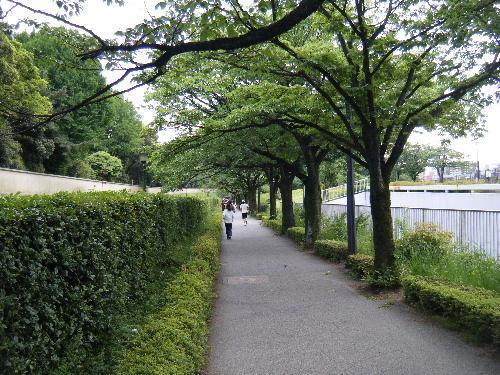 2010_0515shibamata0077.jpg