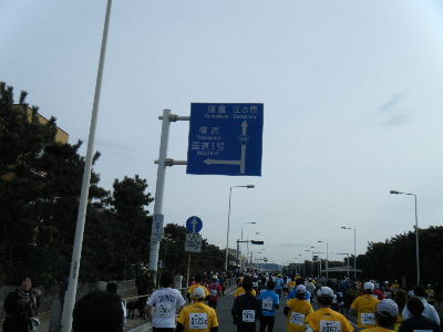 2011_0123湘南国際0093