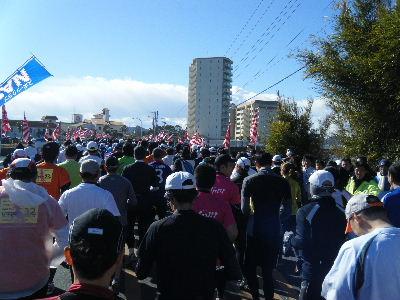 2011_0130館山0010