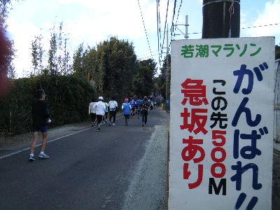 2011_0130館山0070