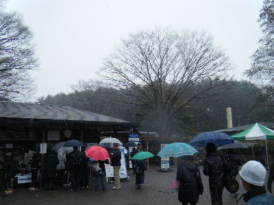 2011_0211森林公園0003