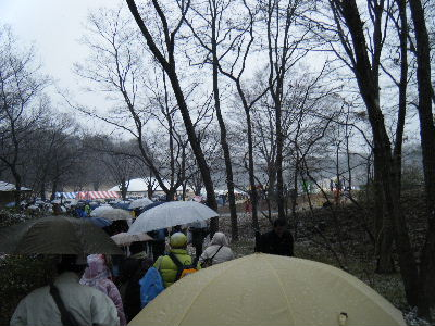 2011_0211森林公園0014
