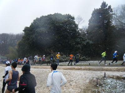 2011_0211森林公園0029