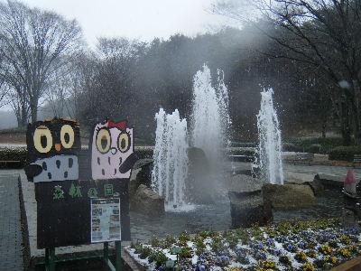 2011_0211森林公園0006