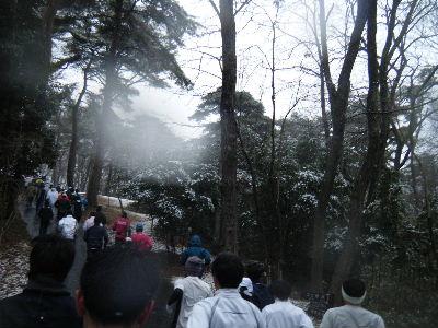 2011_0211森林公園0031