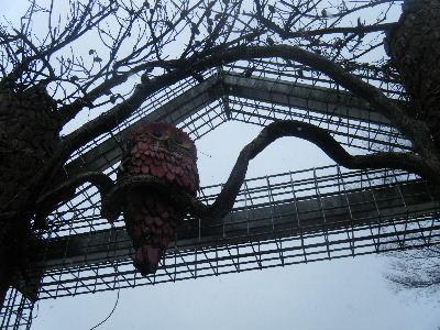 2011_0211森林公園0038