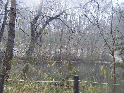 2011_0211森林公園0045
