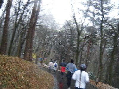 2011_0211森林公園0058