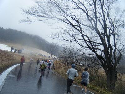 2011_0211森林公園0064