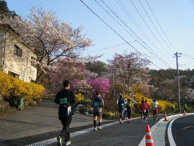 2011_0501富士五湖0131