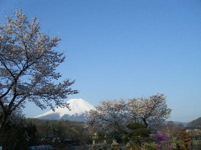 2011_0501富士五湖0139