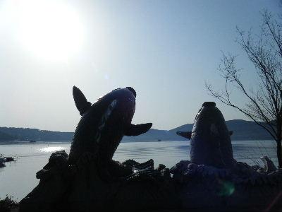 2011_0501富士五湖0150