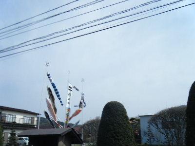 2011_0501富士五湖0162