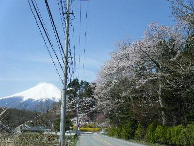 2011_0501富士五湖0165