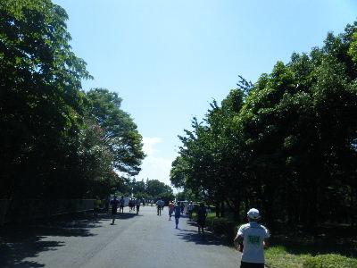 2011_0710所沢8耐0004