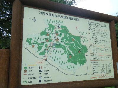 2011_0807爆水ラン0017