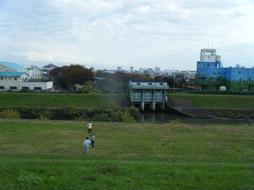 2011_1120戸田マラソン0009