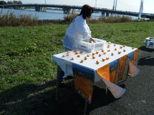 2011_1120戸田マラソン0077