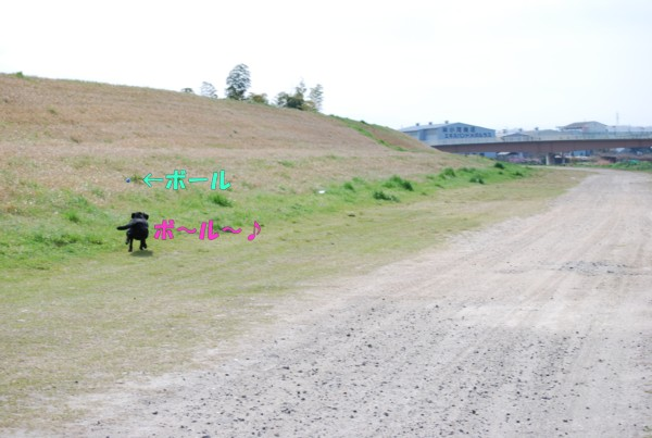 2010.04.13-2