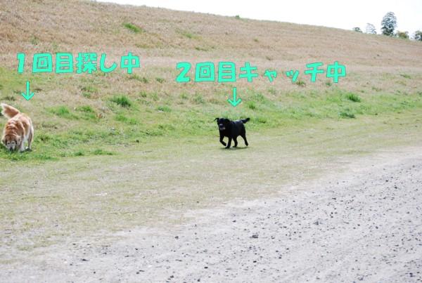 2010.04.11②-10