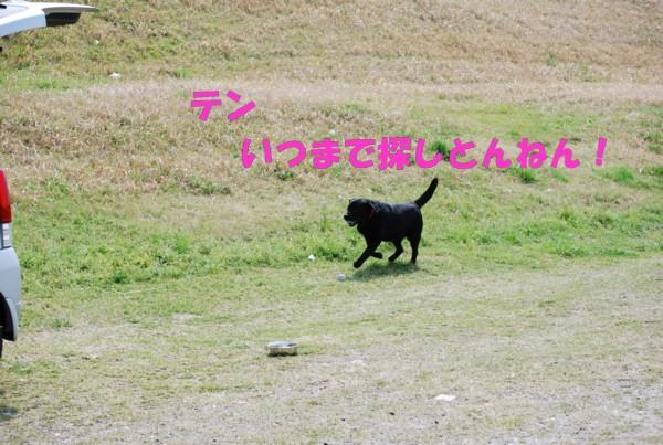 2010.04.11②-9