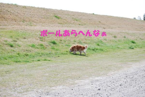 2010.04.11②-8