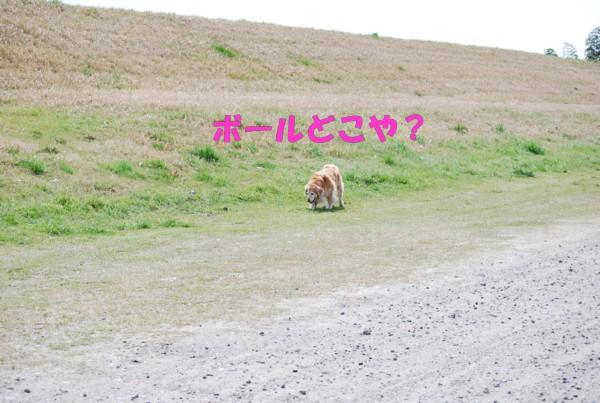 2010.04.11②-7