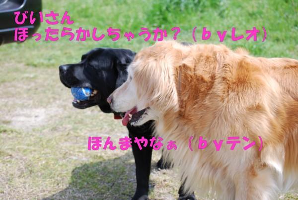 2010.04.11②-12